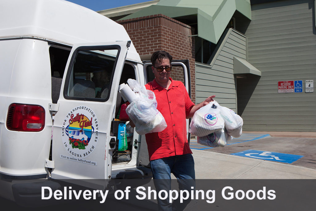 Delivery of Shopping Goods